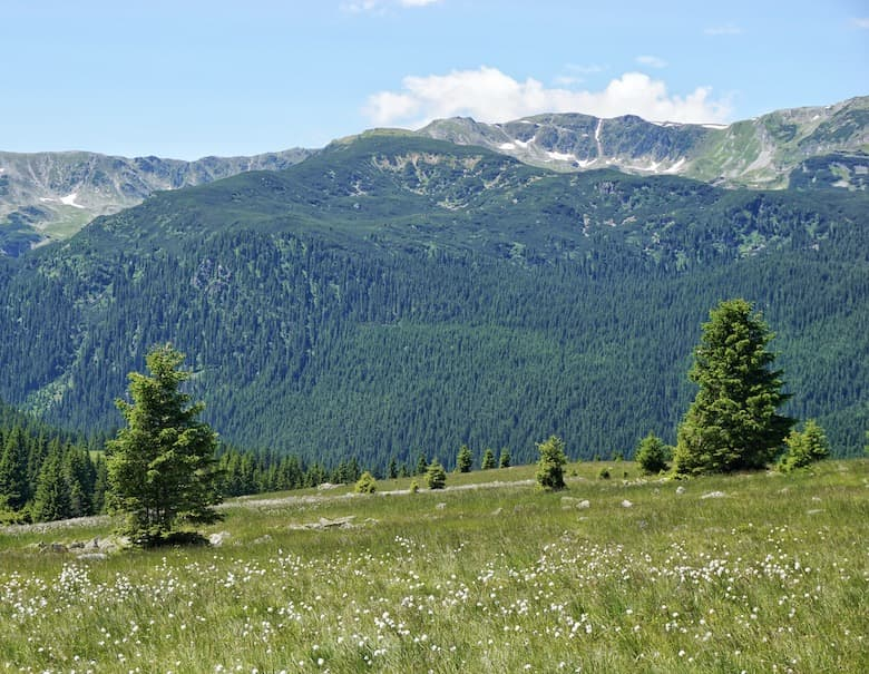 Carpathian Mountains- A Hiker's Paradise