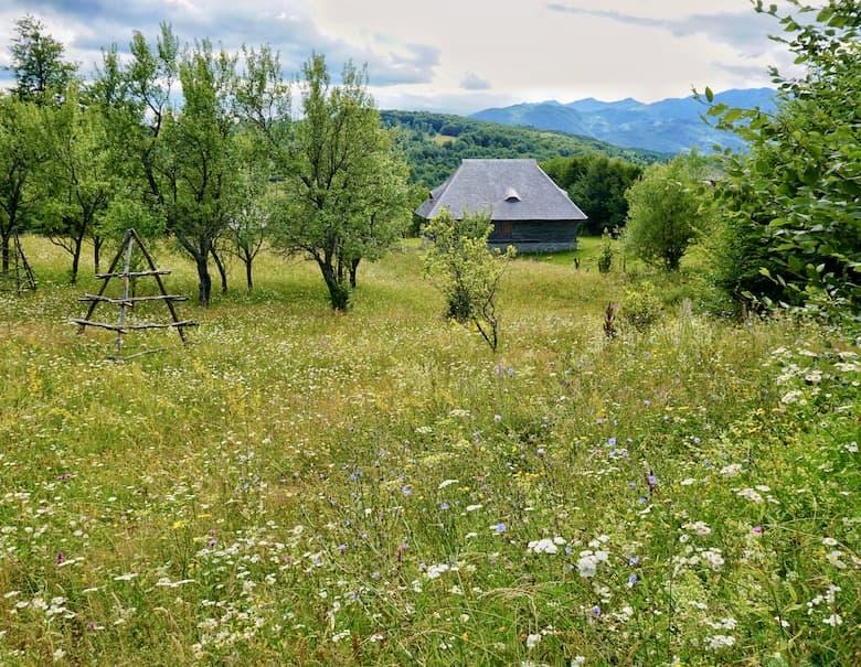 Village home in Romania