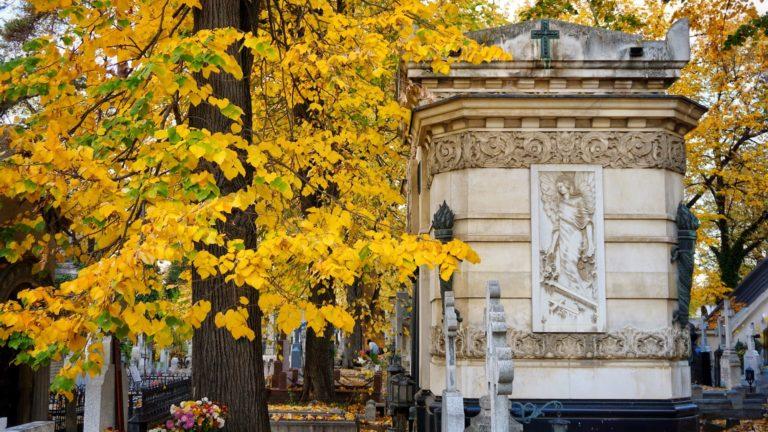 Read more about the article Bellu Cemetery: Bucharest's Père Lachaise